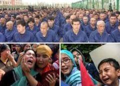 新疆ウイグル自治区 – イスラム教徒収容【Brut.Documentaries シリーズ第一弾】